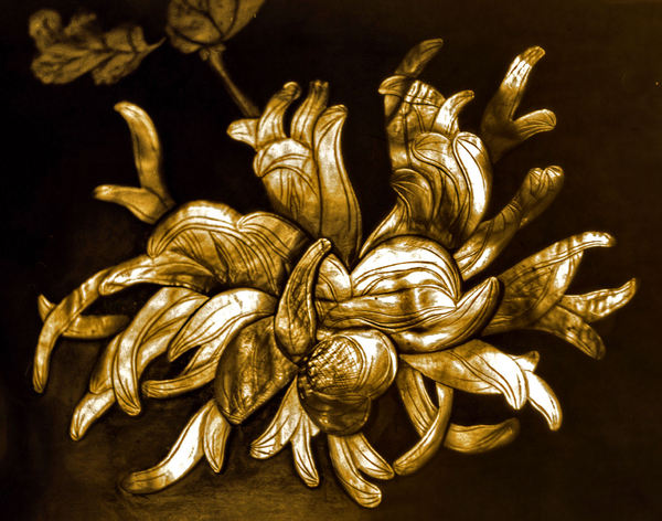 golden shell flower