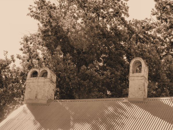 historic homestead4sp: restored historic Australian homestead roofing & chimneys in sepia