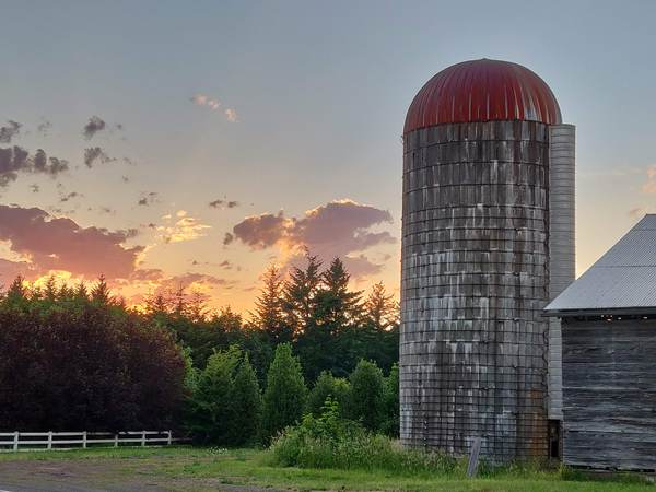Farm at Sunset: A farm scene with a barn and silo at sunset.