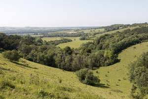 Summer landscape: Landscape of Old Winchester Hill, South Downs, Hampshire, England.