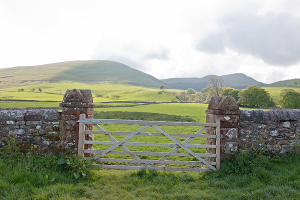 Landscape and gate