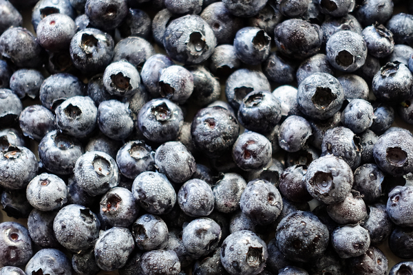 blueberry texture