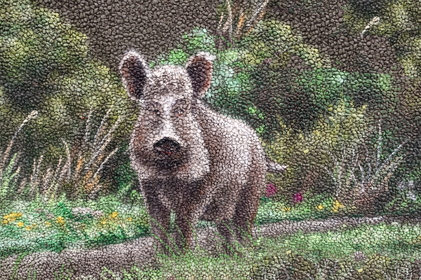 painted wild boar