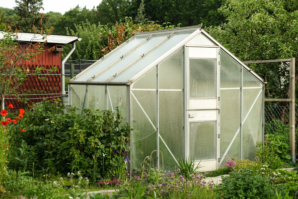 small glass greenhouse