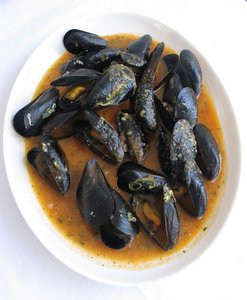 mussels meal: none