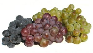 colorful grapes 1