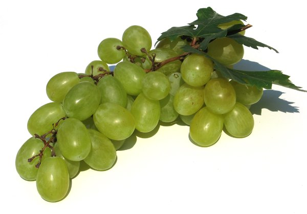 grapes 2: none