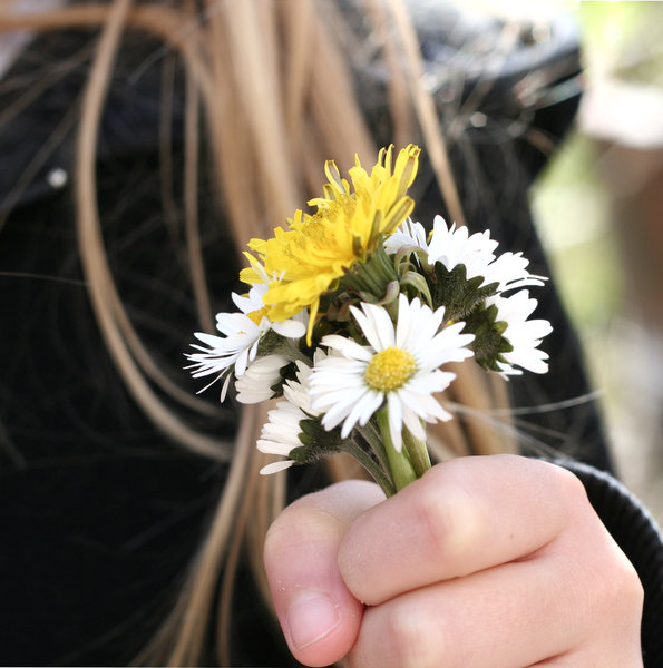 flowers for you: little girl holds a bunch of daisies and a dandelion