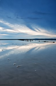Heysham Head: another from my Heysham Head shoot