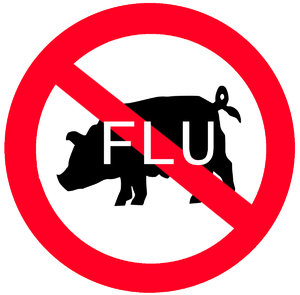 Swine flu: That has not as much in common with swines. Do not kill those sweet animals! You can't catch that illness from the swines!Please comment this shot or mail me if you found it useful. Just to let me know!I would be extremely happy to see the final work even
