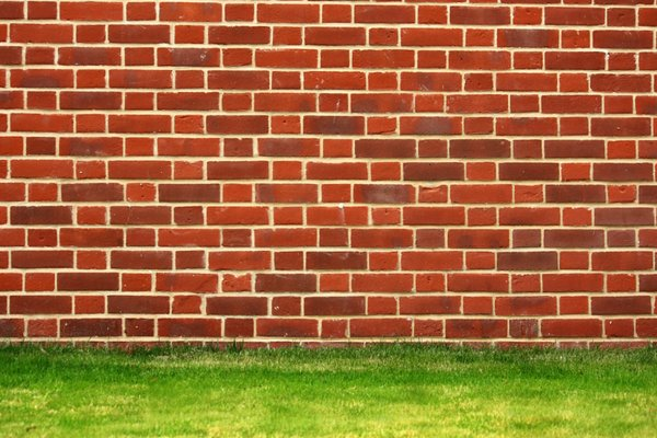 Brick Wall: Traditional english bond red brick wall with a green grass border