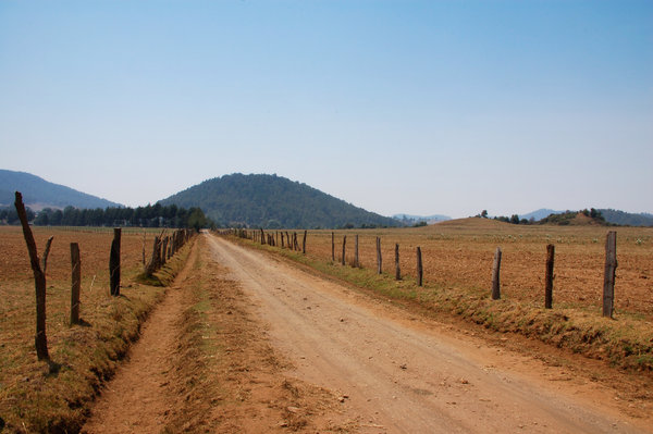 Dirt Road: Landscape of a dry, dusty dirt rural road.