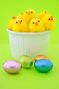 Easter Eggs & Chicks