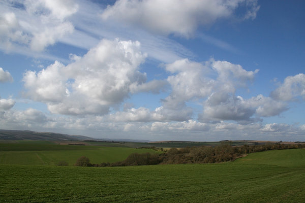 South Downs 6: