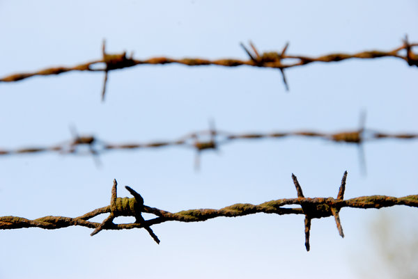 Barbed wire texture
