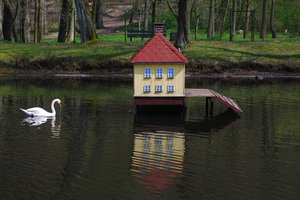 Swan and his house 2