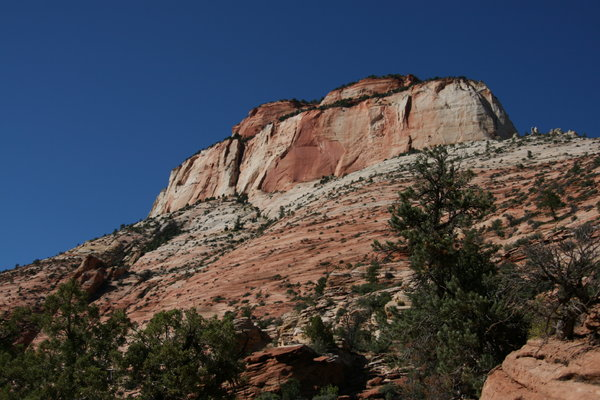 Zion National Park: Some pictures of Zion National Park, Springdale, Utag