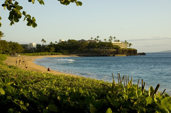 Hawaii: The beach of Maui