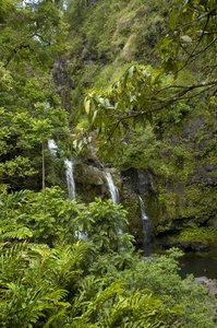 Waterfall: Waterfall in Maui.