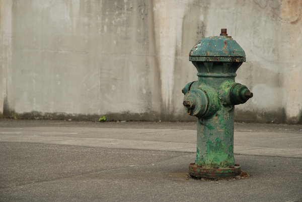 Fire Hydrant: Fire hydrant, downtown Seattle.