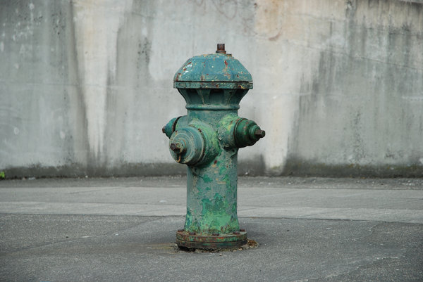 Fire Hydrants 2: Fire hydrants in and near Seattle.