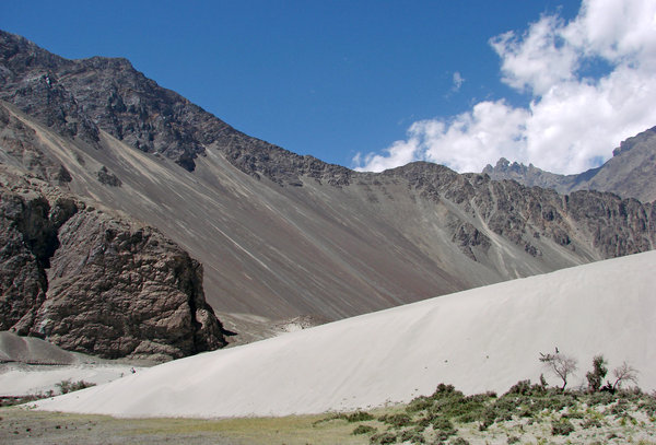 Changing Terrain: The Sand Dunes at Diskit are a unique sight, with snow capped mountains in the backdrop.