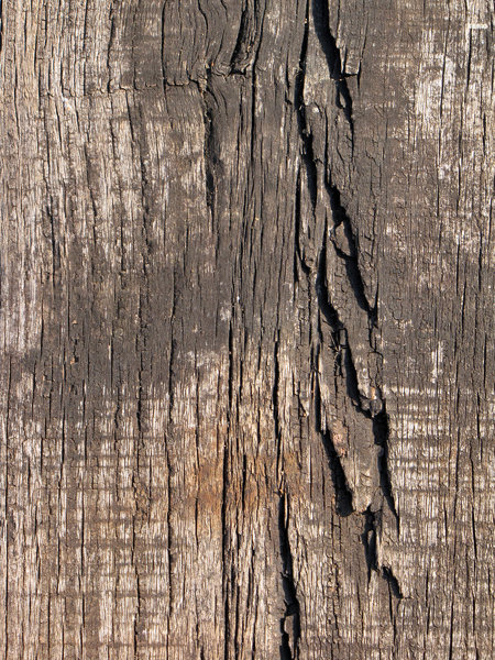 Weathered Wood: no description
