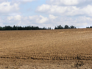 Field: A field. Plowed. Photo taken near Jeziorowskie, Poland.