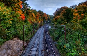 Autumn tracks - HDR