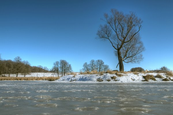 Winter Scene - HDR