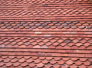 Dovetail tiles: Traditional ornamental dovetail roof tiles on an old house in West Sussex, England.