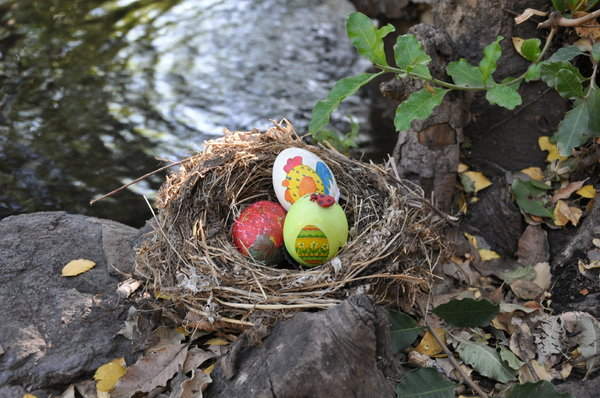 Easter eggs waiting to be foun