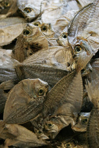 dried fish: us Filipinos eat the damndest things, i swear... heh heh...