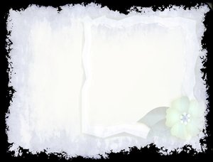 White Grunge: A little addition to a grunge background. Floral insert and frame.