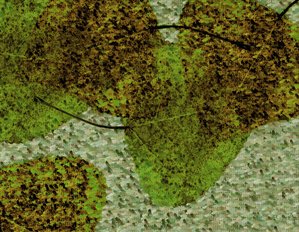 Basho Leaves 3: Variations of a Basho Texture with Leaves.Please visit my stockxpert gallery:http://www.stockxpert.com ..