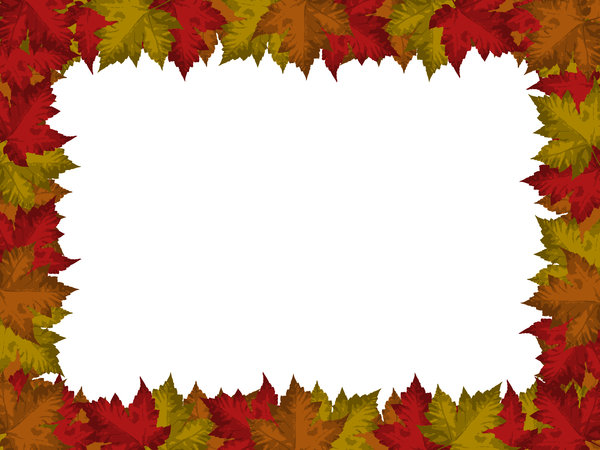 Autumn Leaves Border: Autumn leaves border on white background.  Lots of copyspace.