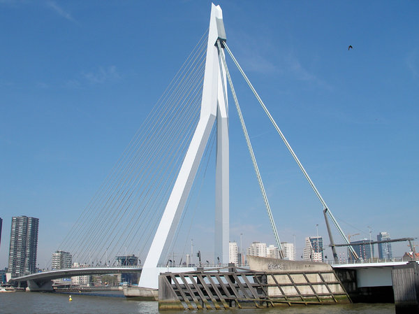 Erasmus Bridge: Erasmus Bridge Rotterdam Holland