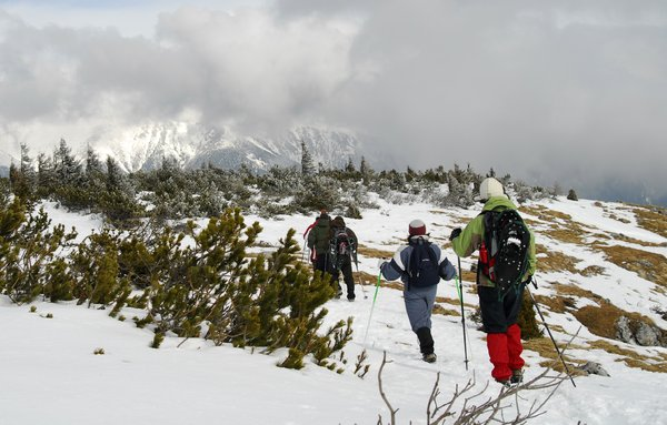 Trekking: group of trekkers in Austrian Rax-Alps