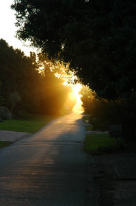Dawn down the road.: Sunrise down a small lane on Leisure Island, Knysna, South Africa.NB: Credit to read