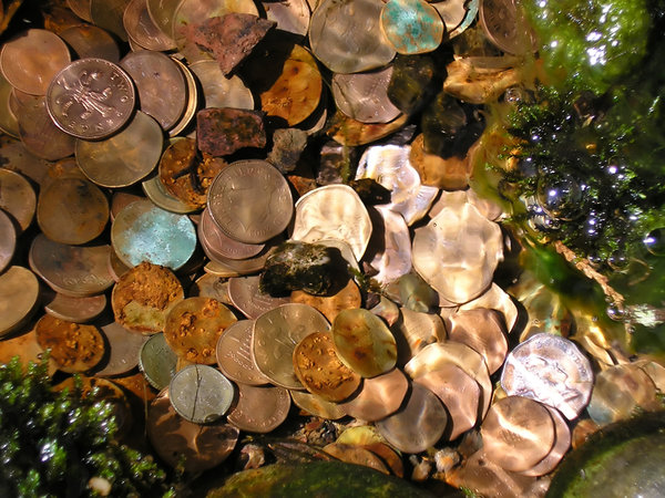 Coins in the water 1