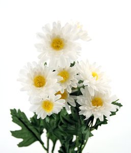 Silk Flowers: A bundle of silk flowers isolated on white.
