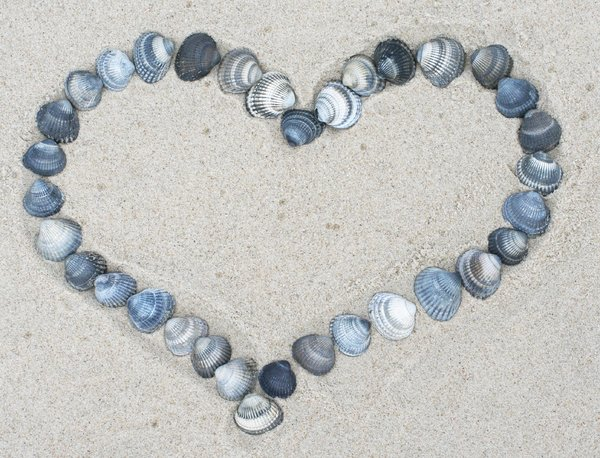 a heart out of mussels: love lies on the beach :)