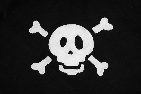 danger: beware of the pirates!:DI painted this death's head on cloth.