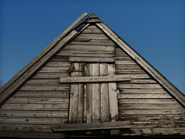 old shed: old shed