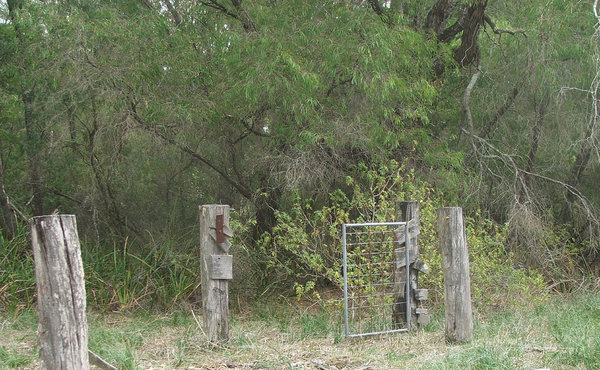 gate to nowhere: gate in derelict fence on unused bush property