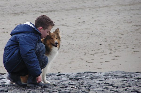 Boy with dog at the beach (2):
