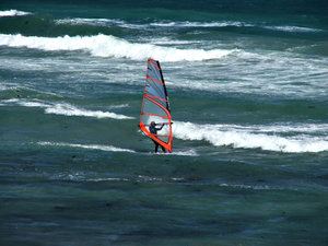 wind surfer
