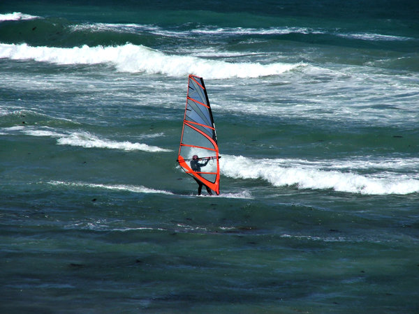 wind surfer: wind surfer trying to maintain balance while sail is pushed by the wind