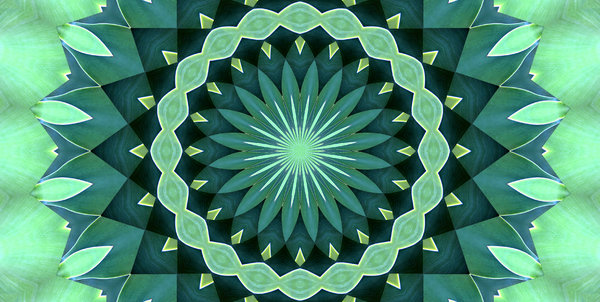 green leaf mandala: abstract backgrounds, textures, patterns, geometric patterns, kaleidoscopic patterns, circles, shapes and  perspectives from altering and manipulating images