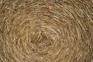 Hay roll texture: Part of a hay roll in a field in West Sussex, England.